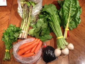 (Clockwise from top) Asparagus, boc choi, hakurei turnips, swiss chard, turtle beans (the black thing), carrots, cilantro