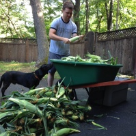 We're shucking the corn. Pidi tried to help but lacked thumbs. We shuck in the yard so we can hose away the corn silks. They get everywhere.